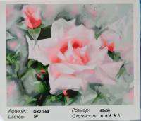Картина по номерам Дивная роза